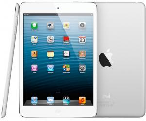 iPad mini gris