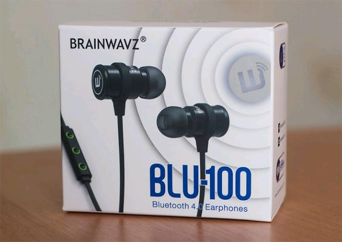 blu-100-brainwavz