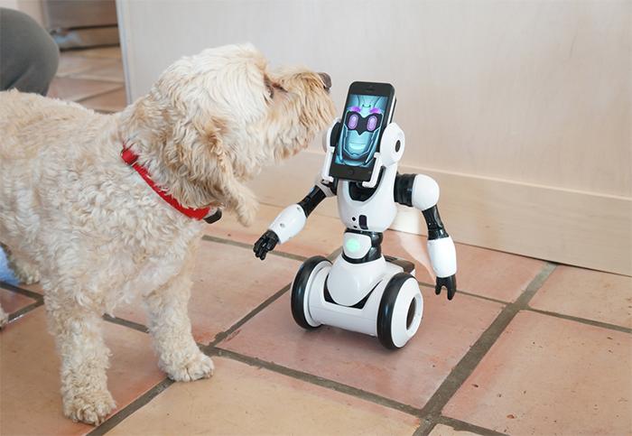robome-robots