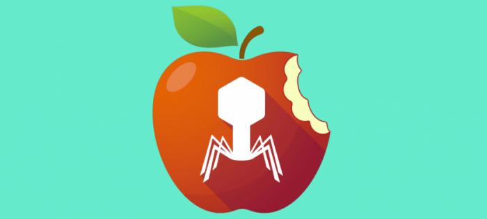 Apple Bug Bounty